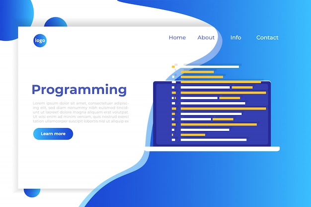 Coding, software development, programming, program code on screen