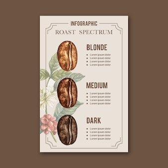 Coffee arabica roast beans burn type of coffee, infographic watercolor illustration
