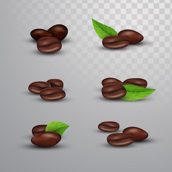 Coffee beans on isolated background
