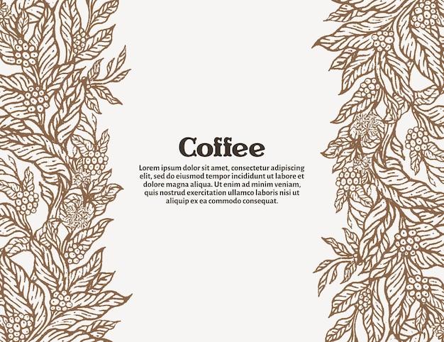 흰색 바탕에 커피 테두리 커피 농장 원시 콩
