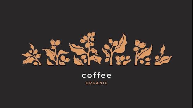 コーヒーブランチ。葉、豆の形。図。ナチュラルドリンク