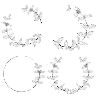 Coffee branch wreath frame collection
