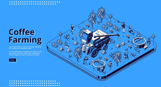 Coffee farming isometric landing page, farmers working on field care of plants and beans collecting crop. people use harvester combine machinery and instruments for work, 3d line art web banner