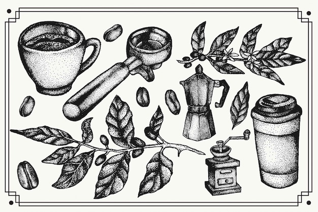 Coffee hand drawn elements set. collection of isolated vintage. set of artwork with beans, coffee plants, tools and pots  for logo,branding, package design and cafe decorations