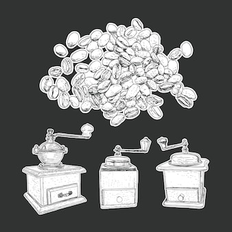 Coffee mill set and coffee beans isolated vector.