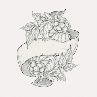 Coffee plant banner hand drawing illustration