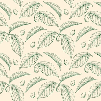 Coffee plant leaf seamless pattern