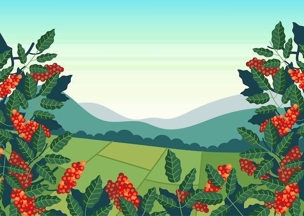 Coffee plantation field production illustration