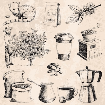 Coffee production hand drawn farmer picking beans on tree and vintage drawing drink retro cafe collection sketch