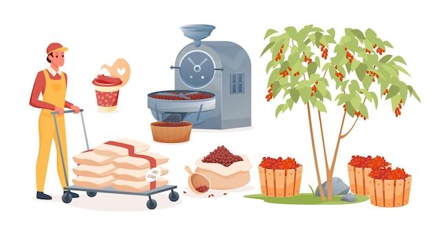 커피 생산 세트. 만화 남자 캐릭터 작업, 로스팅 처리 전에 생과일로 가방을 들고 볶은 커피 콩을 만드는 과정