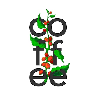 Coffee symbol. color branch on white background. art design