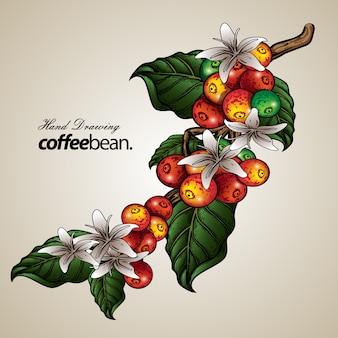 Иллюстрация кофейного дерева Premium векторы