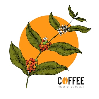 Coffee tree with hand draw style