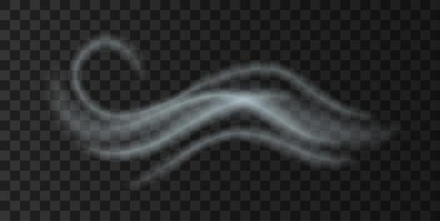 冷たい風の霧の打撃、現実的な天気のアイコン。白い煙が飛んでいる秋または冬の天気予報アイコン