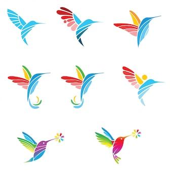 Colibri colour