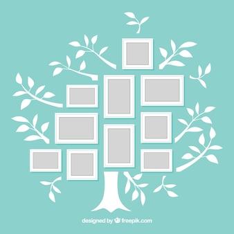 프레임과 나무 콜라주 개념