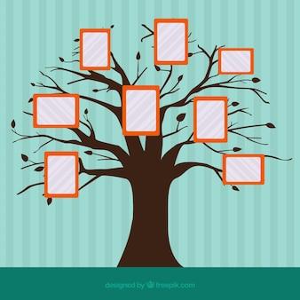 Концепция коллажа с деревом