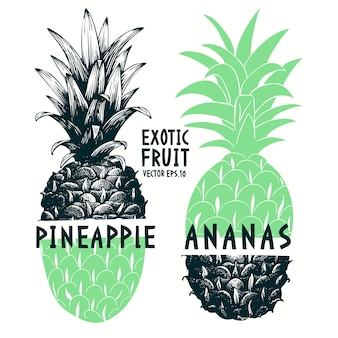 Collage hand drawn pineapple