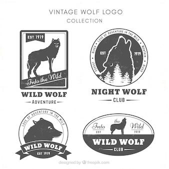 ヴィンテージ野生のオオカミロゴcollectio