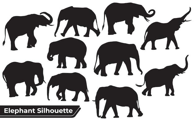 Collection of animal elephant silhouettes in different positions