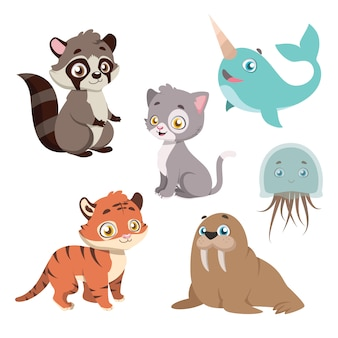 Collection of animal species