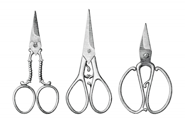 Collection of antique scissors hand draw vintage style black and white clip art isolated, vintage scissors rare item