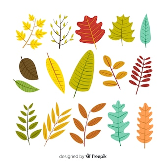 Collection of autumn leaves flat design