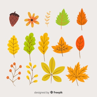 Collection of autumn leaves hand drawn style