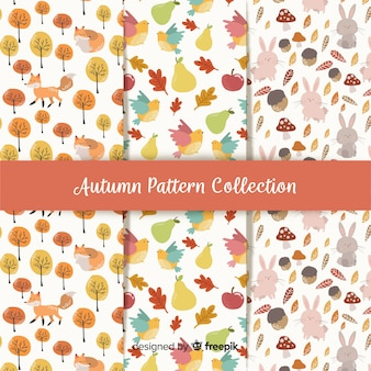 Collection of autumn patterns flat design