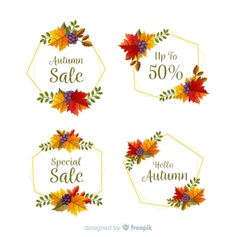 Collection of autumn sale labels flat design