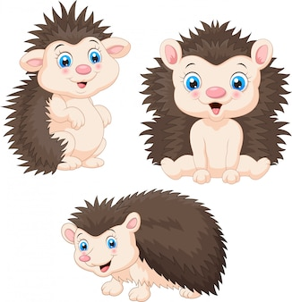 Collection of baby hedgehog cartoon sets