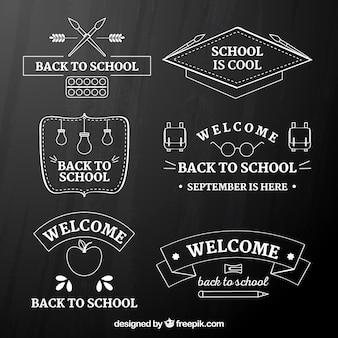 Raccolta di ritorno a scuola badge in stile lavagna