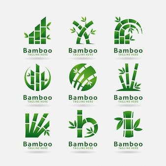 Collection of bamboo logo design