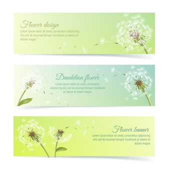 Raccolta di banner e nastri con dente di leone estate e elementi di design pollens isolato illustrazione vettoriale