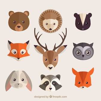 Collection of beautiful forest animals in flat design