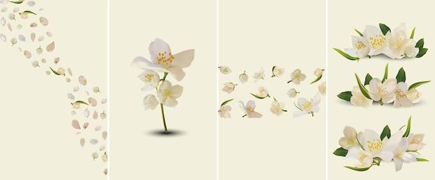 白く咲くジャスミンの美しいコレクション。美容製品、香水、薬のバナー。