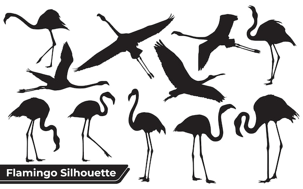 Collection of bird flamingo silhouettes in different positions