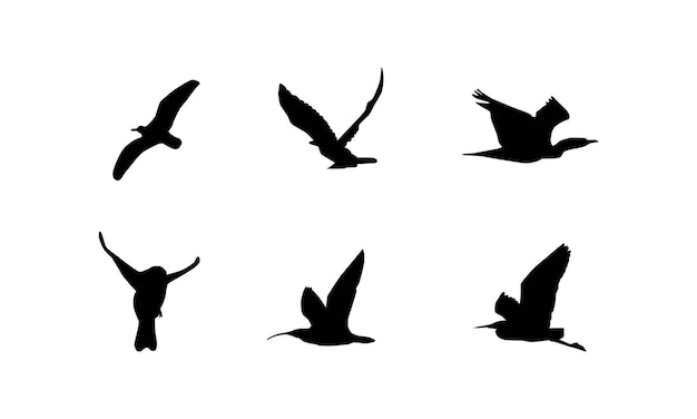 Collection of bird silhouette vector illustrations
