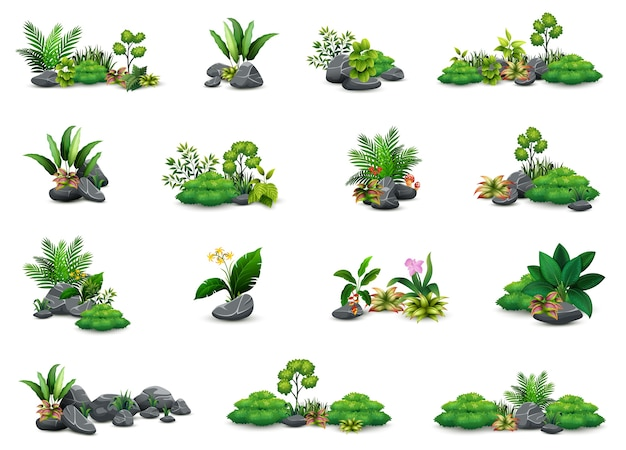 Collection of botanical small plants