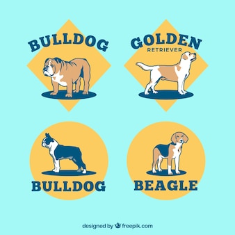 Collection of breed dogs