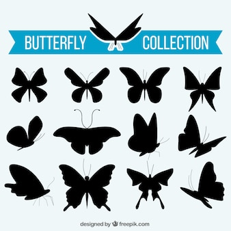 Collection of butterflies silhouettes
