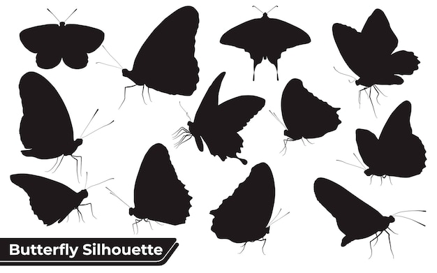 Collection of butterfly silhouettes in different poses