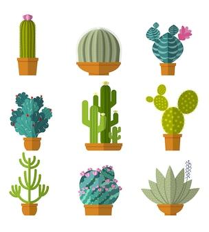Collezione di cactus in stile piatto.