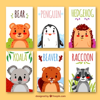 Collection of cards with exotic animals
