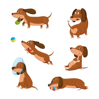 Collection of cartoon illustrations with a dachshund