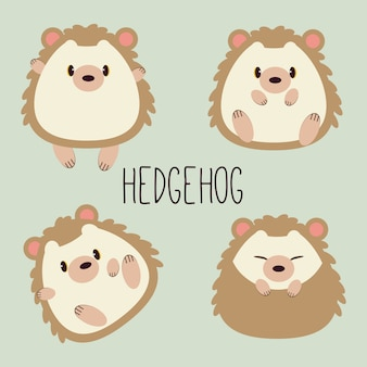 Collection of character cartoon of cute hedgehog with many action. sitting, sleeping