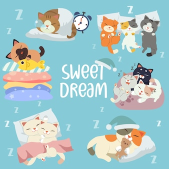 The collection of character of cat sleeping