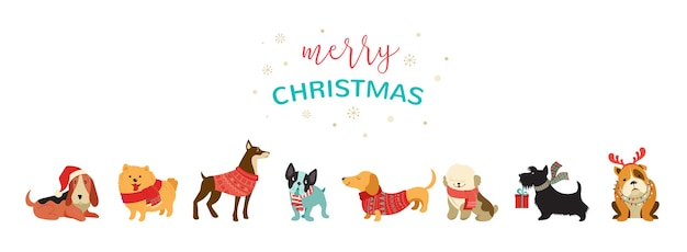 Collection of christmas dogs, merry christmas illustrations of cute pets