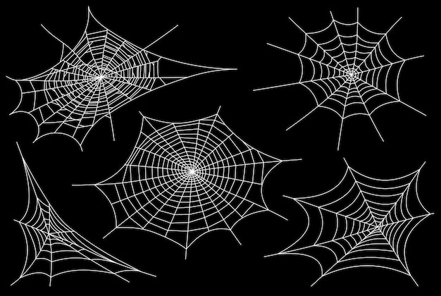 Collection of cobweb