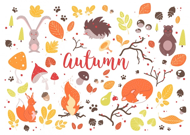 Collection of colorful autumn leaves, branches, cones, acorns, nuts, fruits, berries, mushrooms, burning bonfire and cute cartoon forest animals isolated on white background. illustration.